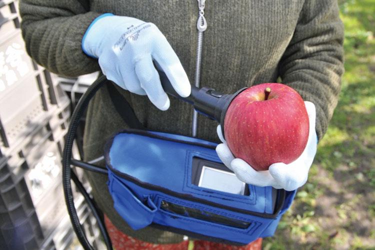 果実の糖度を約3秒で演算処理を行いデジタル表示
